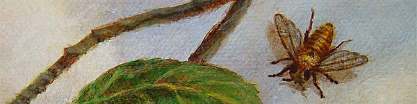 "Spyker, detail from ""A Natural Selection"", 2001, Acrylics on Canvas"