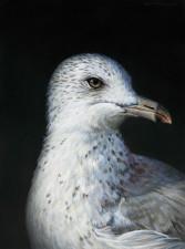 """Baroque Self-Portrait as a Seagull"", 2013, Acrylics on Hardboard, 8 x 6 in., by David Jay Spyker"
