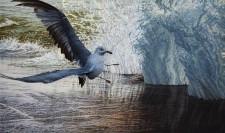 """Sudden Flight"", 2013, Acrylics on Canvas, 36 x 60 in., by David Jay Spyker"