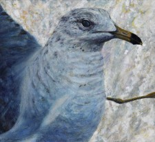 """Startled Gull"" (Study for Sudden Flight), 2011 Watercolor and Acrylics on Paper (Lanaquarelle 140 lb. Cold Pressed) 10 5/8 x 11 1/2 in., by David Jay Spyker"