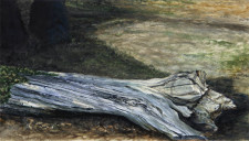 """Fallen Maple"", 2012, Watercolor and Drybrush on Paper (Arches 140 lb. Hot Pressed), 12 9/16 x 22 1/16 in., by David Jay Spyker"