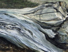 """Fallen Maple"", 2012, Watercolor and Drybrush on Paper (Arches 140 lb. Hot Pressed), Detail, by David Jay Spyker"